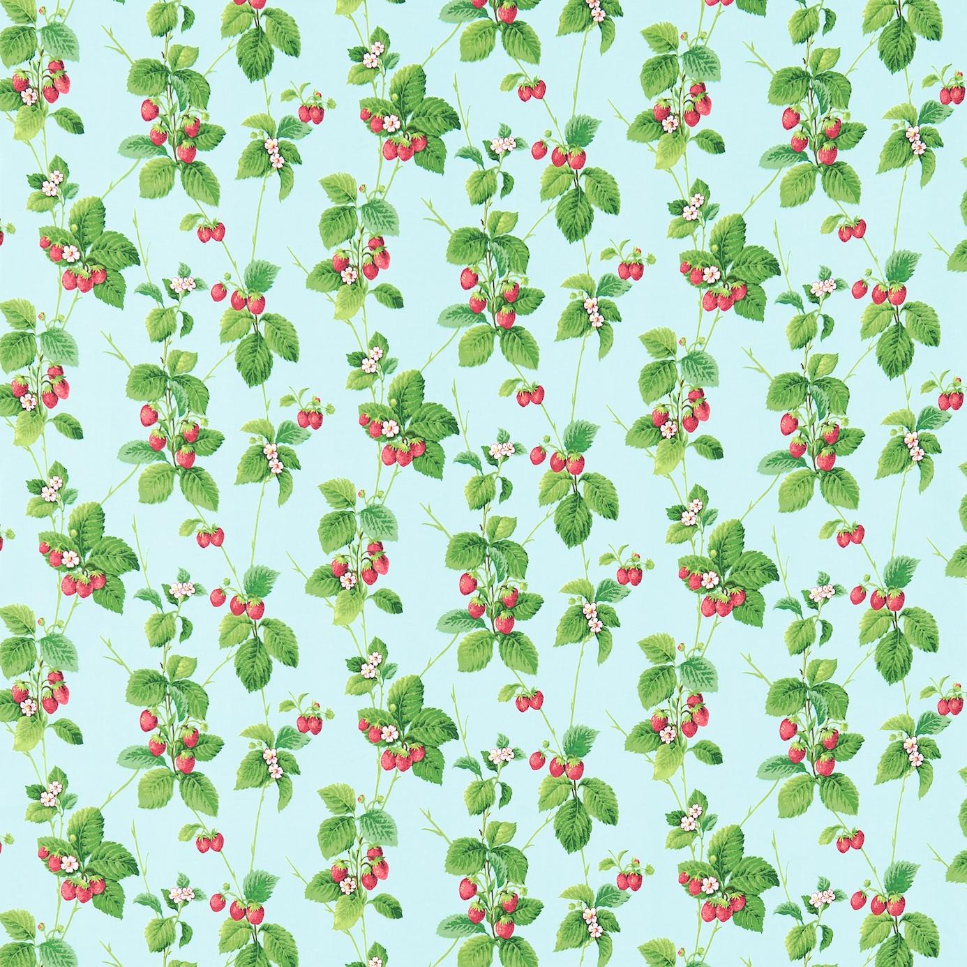 Summer Strawberries Deco