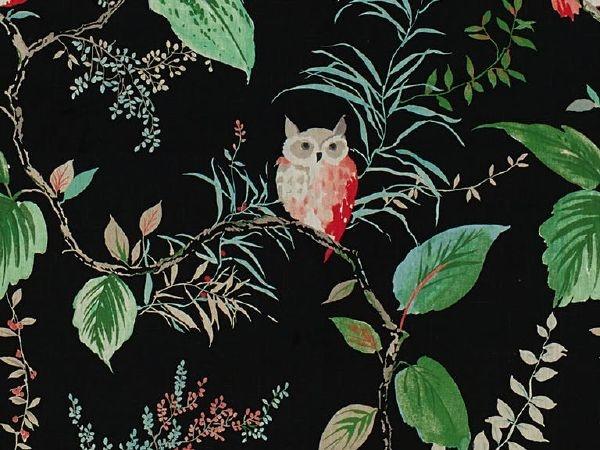 Kate Spade ♠ New York : Owlish